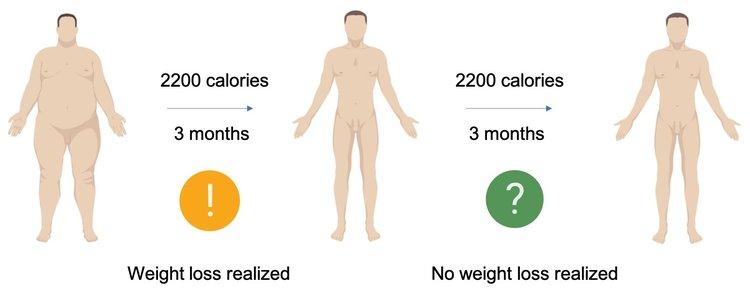 MetabolicAdaptation